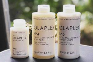 Evolution Salon Olaplex